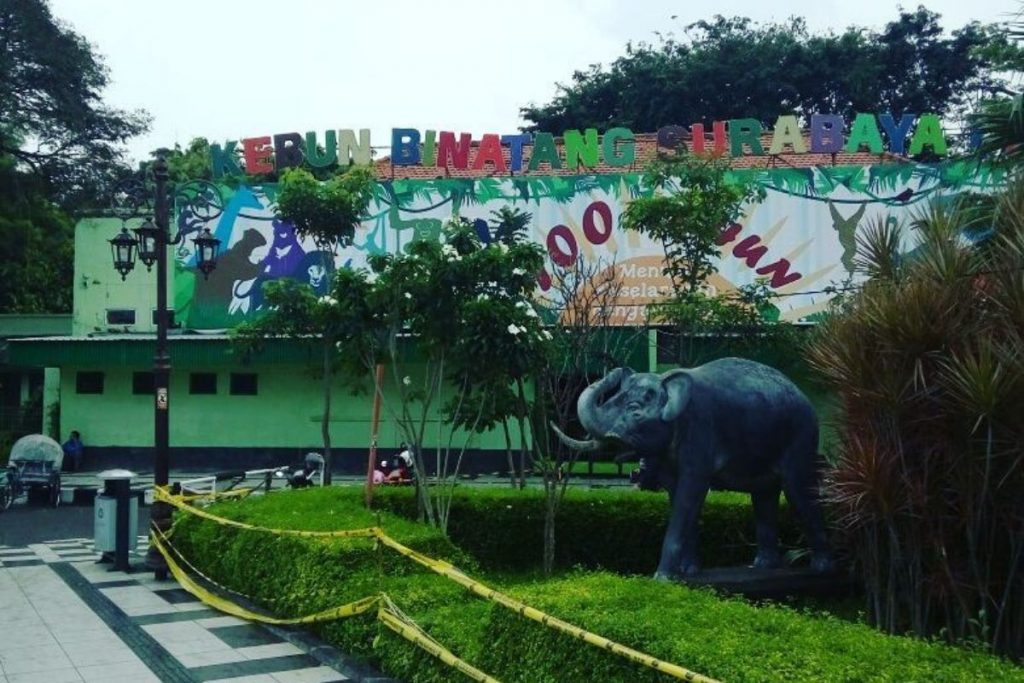 tiket Kebun Binatang Surabaya