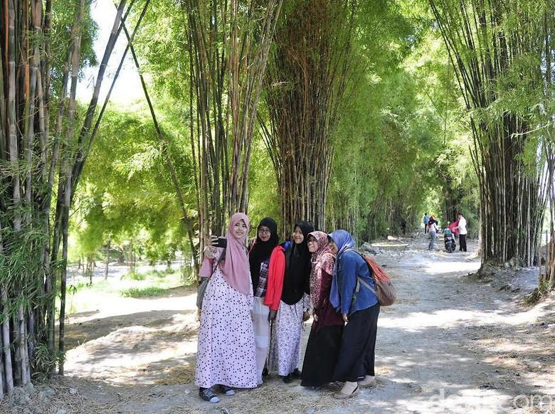 wisata Hutan Bambu Surabaya