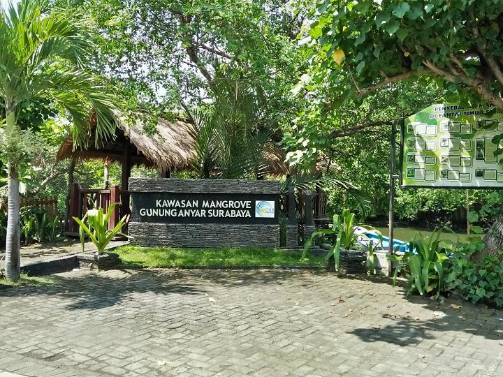 wisata mangrove gunung anyar